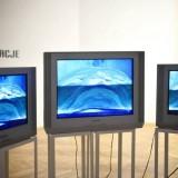 wystawa Antycypacje, Galeria Intymna, Katowice, 2013