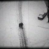 Z mojego okna (1978-1999), wideo/film, 19 min., 2000