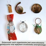 """""""Zmienność organizmów"""", 2010"""