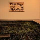 eksperyment z zasiewem i głosem , Galeria Manhattan, 18.01.2013 fot. Andrzej Grzelak